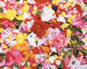renkli boya kalemi ile çizilmiş gül yaprakları